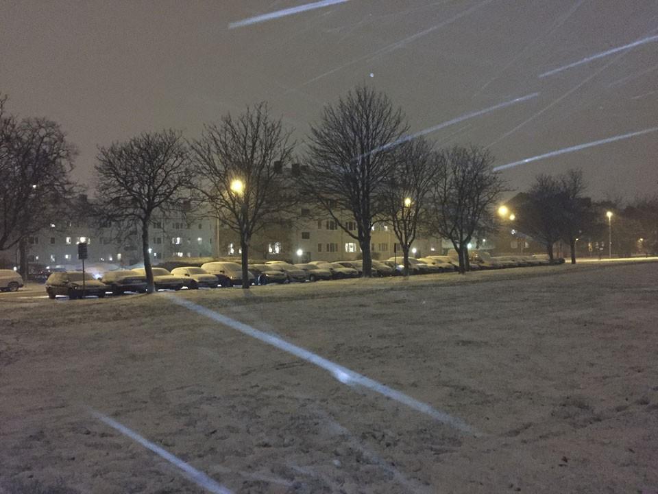 vinternarhar